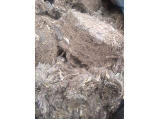 Briquete da Casca de Algodão - ( capulho )