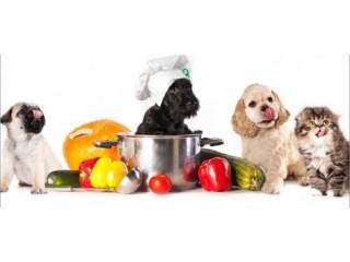 Alimentação Natural Para Cães e Gatos - E-book de Receitas