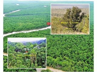 Área de reserva legal a venda biomas cerrado e mata atlântica