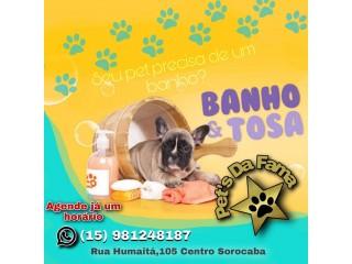 Banho e tosa para cães , gatos e animais exóticos de pequeno porte