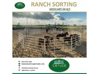 Ranch sorting e redondel de aço