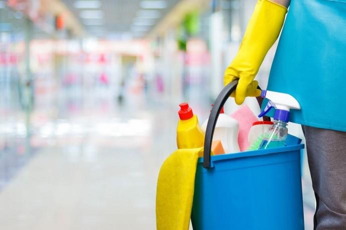 contrate-servico-de-faxineira-diarista-passadeira-lavadeira-big-5