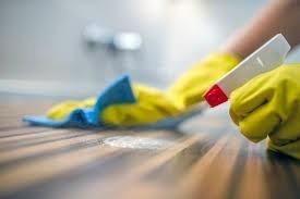 contrate-servico-de-faxineira-diarista-passadeira-lavadeira-big-2