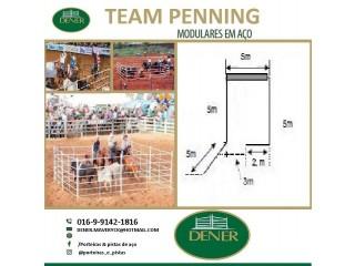 Curral de Team Penning