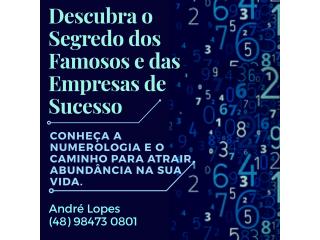 Numerologia Manual da Prosperidade