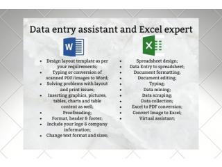Assistente de data entry, especialista em planilhas no Excel